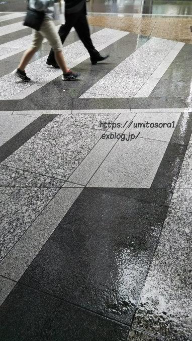 雨に歩く_b0324291_21435079.jpg