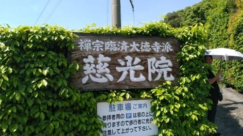 久しぶりの新幹線(7)_f0166694_18272355.jpg