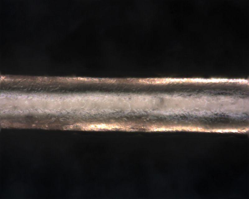 【マイクロスコープの斉藤光学です】人毛・獣毛を観察しました。_c0164695_15134585.jpg