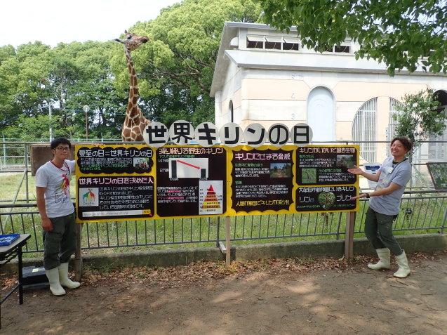 「世界キリンの日」特別イベントを行いました!_c0290504_08521245.jpg