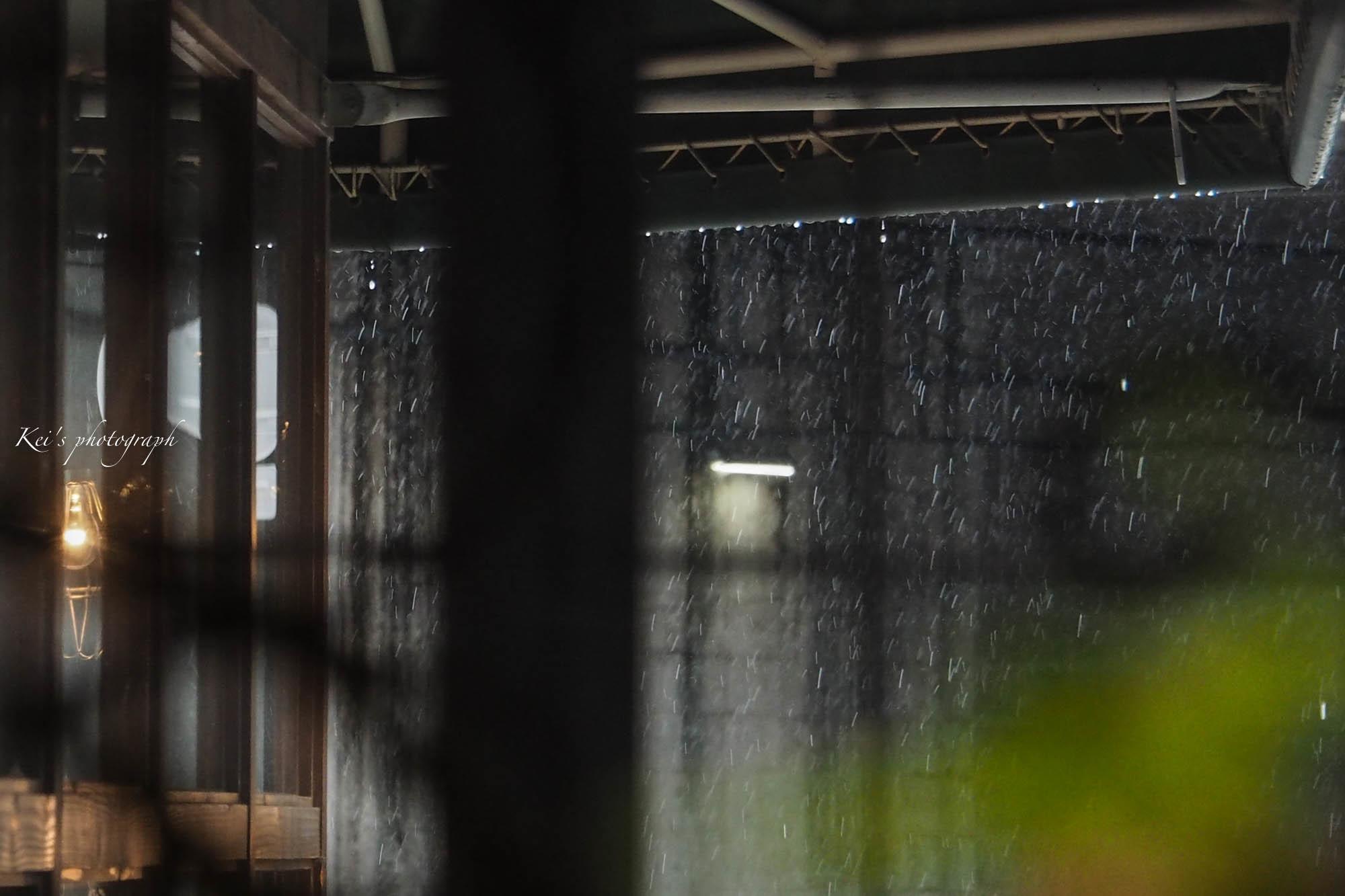 雨のはずが・・・_c0235725_05435505.jpg