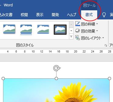 Office2016とOffice2019の一部のタブ名が変わった?!_a0030830_10462016.png