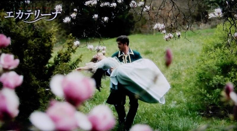 ひっそり鬱金香 fes 下 🌷 tulip festival3_f0374041_20545550.jpg