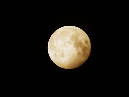 ストロベリームーンと木星_e0256951_23461530.jpg