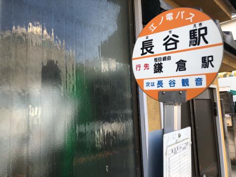 鎌倉あじさい巡り_e0230154_07250011.jpg