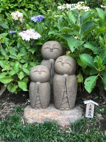 鎌倉あじさい巡り_e0230154_07253910.jpg