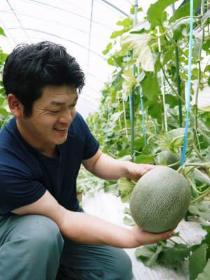 熊本産高級マスクメロン『肥後グリーン』はお中元にも大人気!シャキシャキとトロトロ!2つの食感をぜひ!_a0254656_17533441.jpg