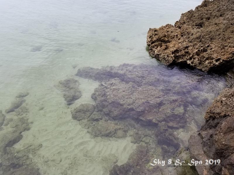 ◆ 梅雨明けの石垣島へ、その3 海へと続く「サビチ鍾乳洞」へ(2019年6月)_d0316868_09364584.jpg