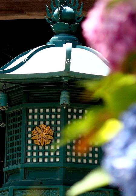 お寺の鐘が聞こえる・・_c0357781_19151031.jpg