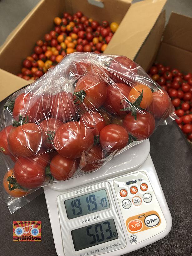 期間限定で、あま~いフルーツの様なミニトマト!!_e0126901_09391433.jpg
