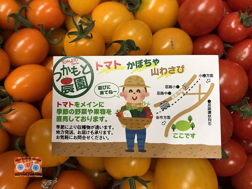 期間限定で、あま~いフルーツの様なミニトマト!!_e0126901_09392293.jpg
