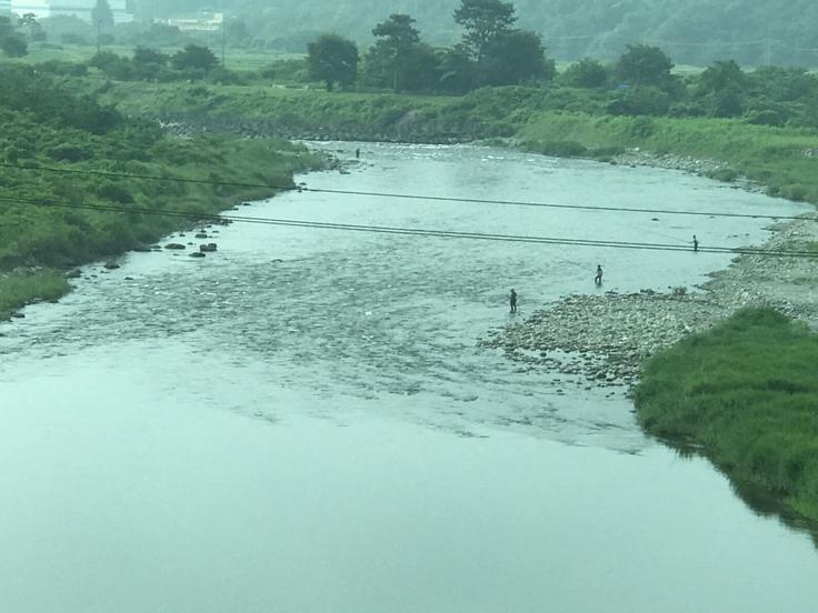 梅雨の合間の相模川。_c0212604_7241853.jpg