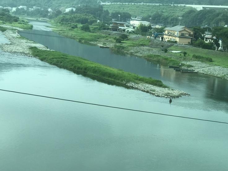 梅雨の合間の相模川。_c0212604_7253889.jpg