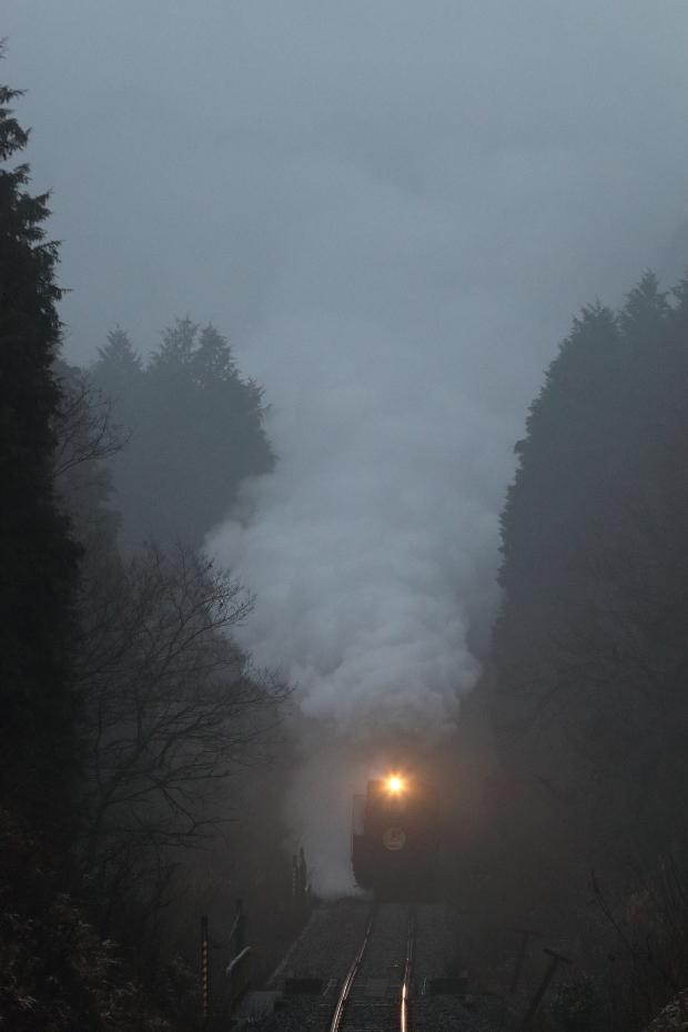 雨とヘッドライト - 2018年・山口線 -_b0190710_22322593.jpg