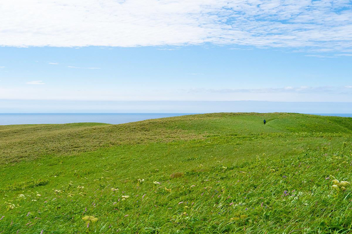 礼文 天上の花園を行く Rebun Isle, Hokkaido #SONYα9_c0065410_22593860.jpg