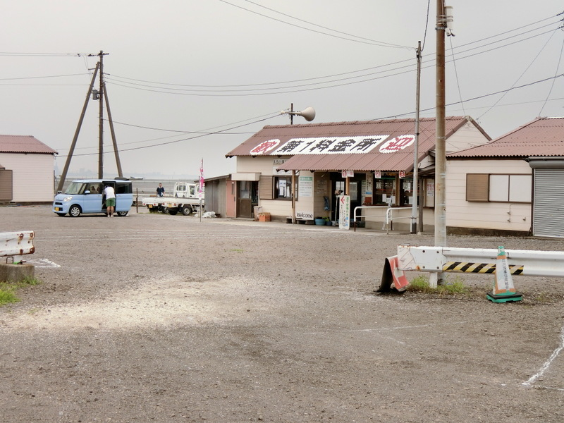 7月3日(水)江川海岸へ潮干狩り_d0278912_20475103.jpg