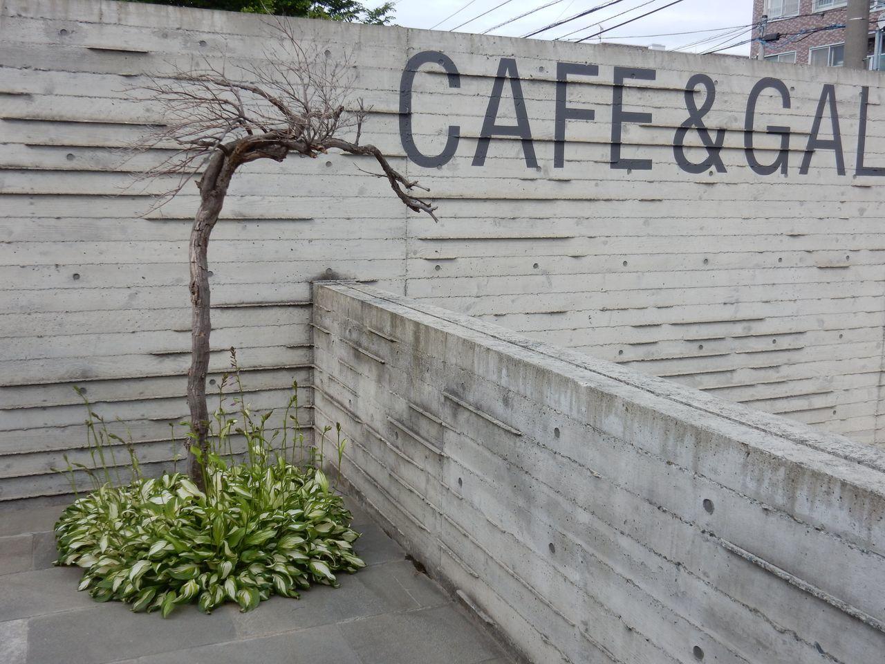 「札幌アートの宮殿 ベストセレクション」上映会_c0025115_22393529.jpg