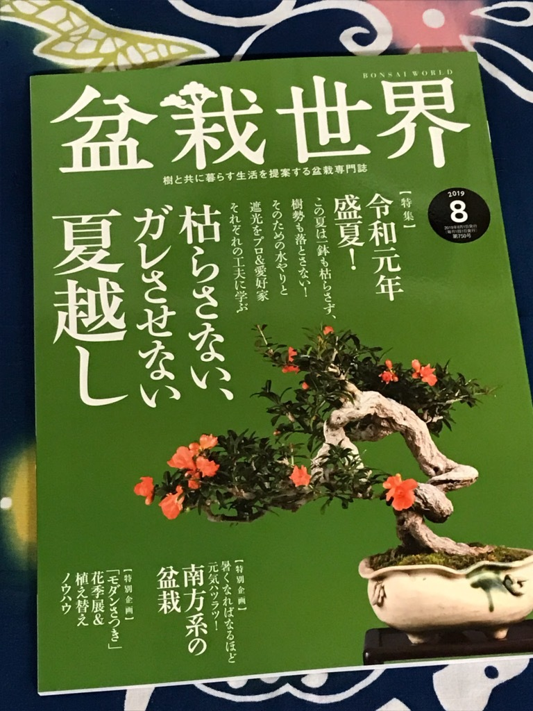 『盆栽世界 8月号』_f0170915_13323387.jpg