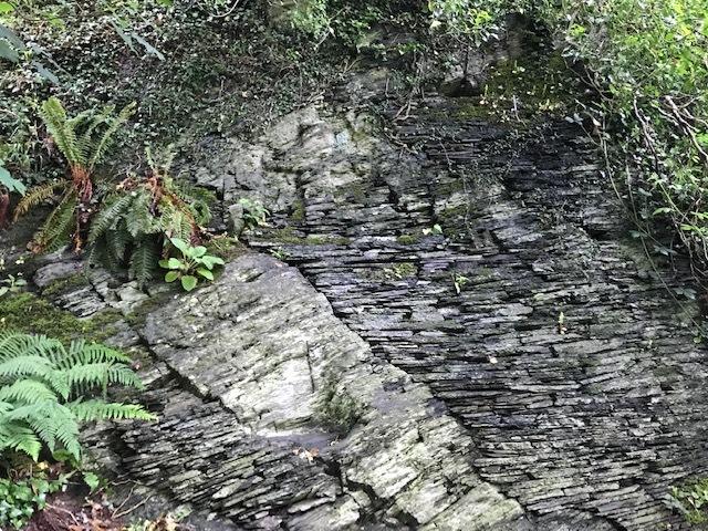 イギリスの旅③ ウェールズ*石の記憶_d0085018_10413654.jpg