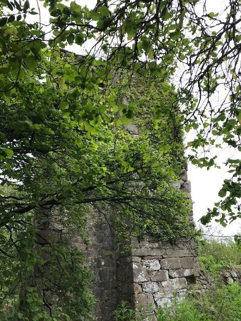 イギリスの旅その④ 古い教会_d0085018_12212040.jpg