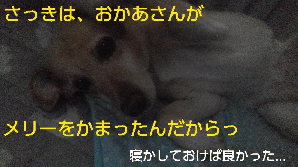 b0339522_21481100.jpg
