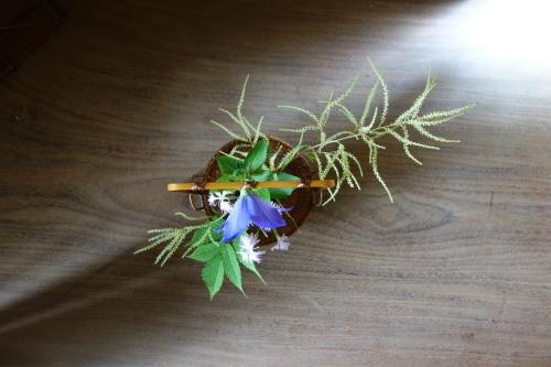 初夏の手付き花籠_a0197730_01540352.jpg