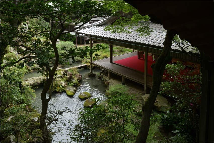 京都紫陽花寺_e0272231_16182241.jpg