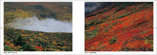 写真展「絶対風景」が富山へ奇跡の巡回!_c0142549_18525387.jpg