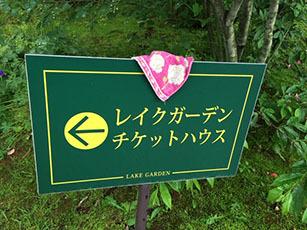 バラ園をはしご_e0182479_14534639.jpg