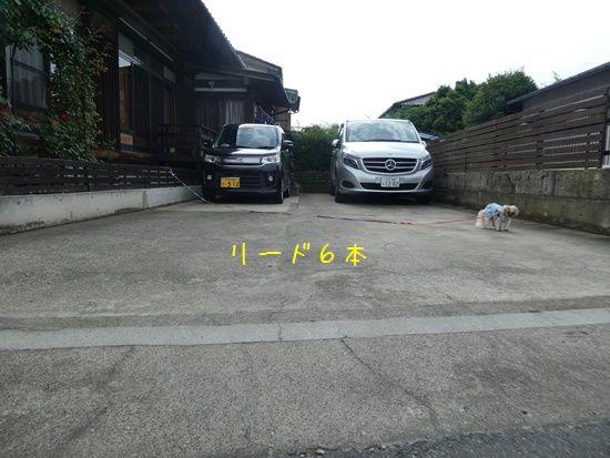 e0234881_21552959.jpg