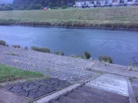 こんな所に巨大魚が !! 死闘_e0115904_18420202.jpg