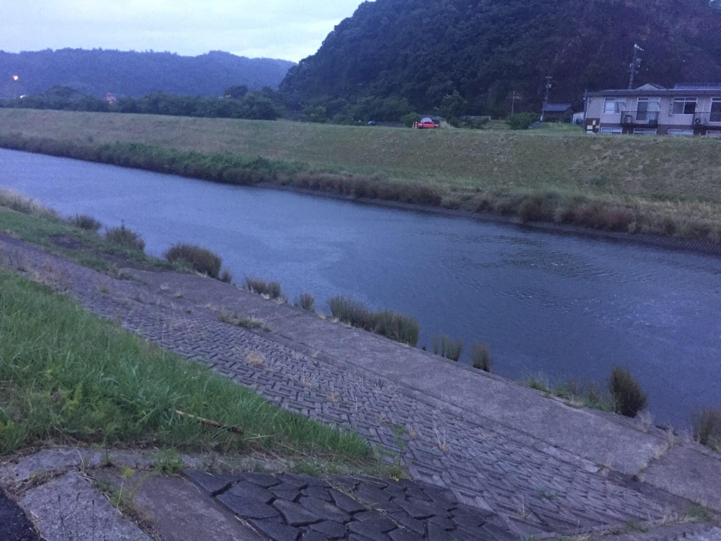 こんな所に巨大魚が !! 死闘_e0115904_18420377.jpg