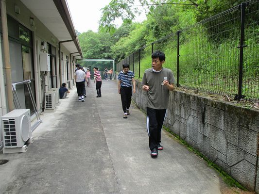 7/3 散歩_a0154110_16545695.jpg