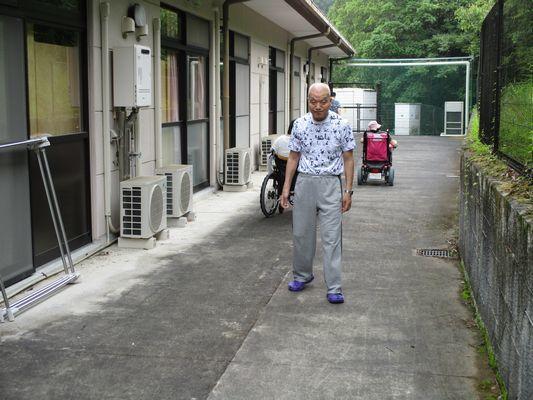 7/3 散歩_a0154110_16545929.jpg