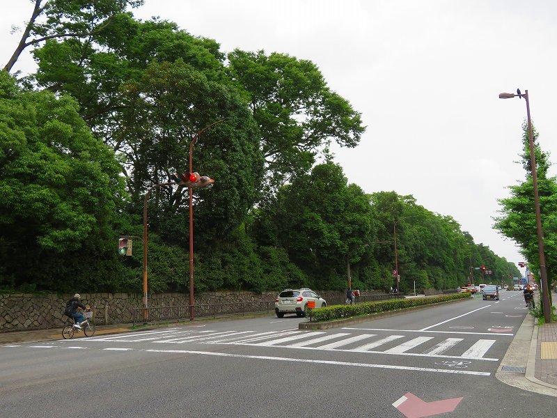 京都烏丸通今出川~丸太町通までを歩く20190701_e0237645_22154759.jpg