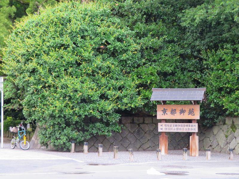 京都御苑「蛤御門~堺町御門」を歩く20190701_e0237645_22272081.jpg