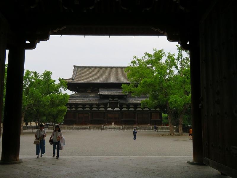 東寺の伽藍の風景20190703_e0237645_22561318.jpg