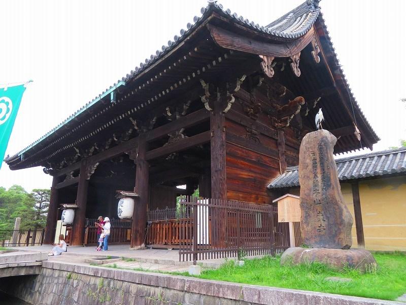 東寺の伽藍の風景20190703_e0237645_22561344.jpg