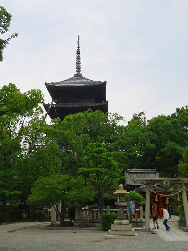東寺の伽藍の風景20190703_e0237645_22561374.jpg