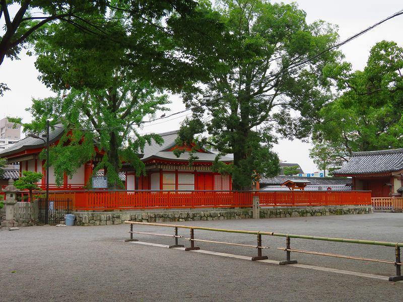 東寺の伽藍の風景20190703_e0237645_22561389.jpg