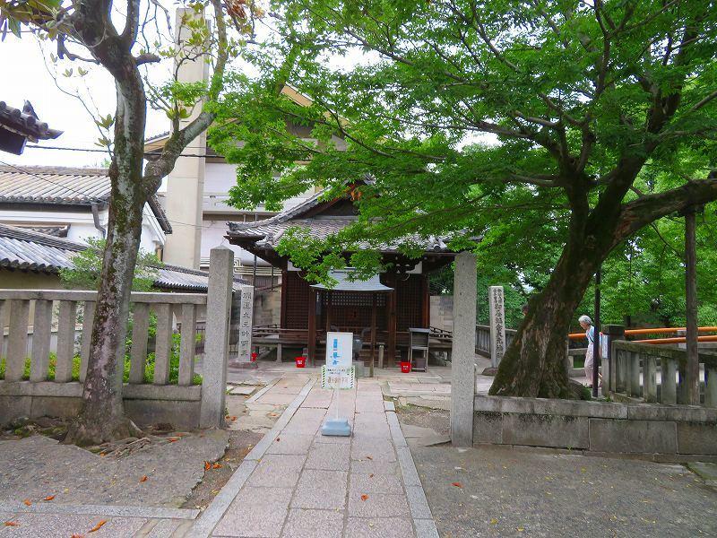 東寺の伽藍の風景20190703_e0237645_22561481.jpg
