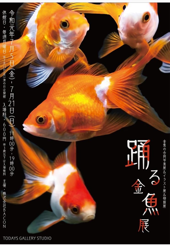 明日から【踊る金魚展 】(^^)_e0385587_19170387.jpeg