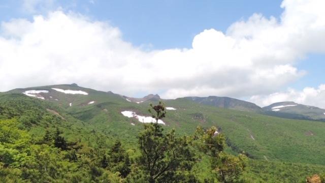 6月1日「そうだ!山へ行こう!」報告_b0114789_22090130.jpeg
