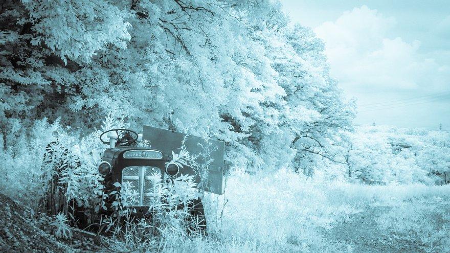 想いあふれる7月の白い牧場_d0353489_19442649.jpg