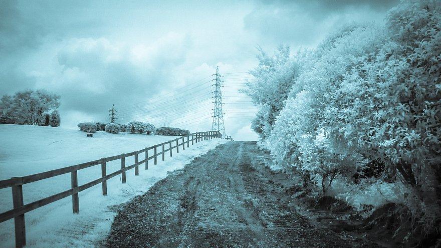 想いあふれる7月の白い牧場_d0353489_19445868.jpg