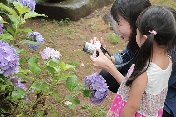カメラ女子会@福井市 足羽山で紫陽花&パンケーキを撮ろうの会♪_a0189805_23362253.jpg