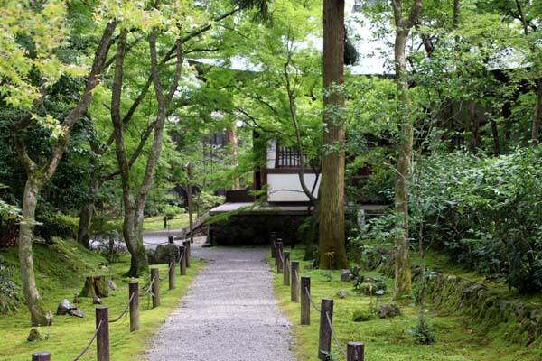 竹の寺 地蔵院_e0048413_18213945.jpg
