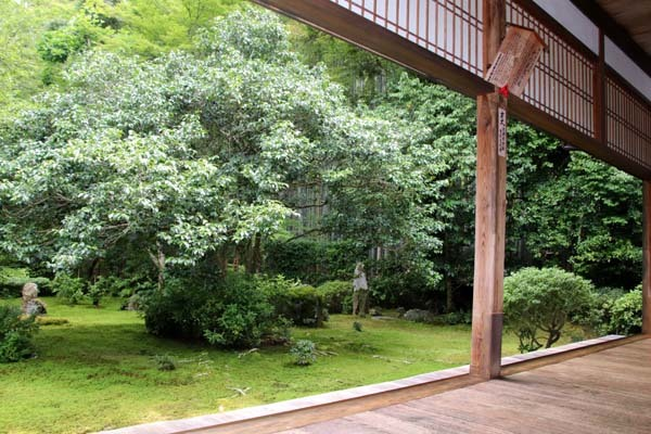 竹の寺 地蔵院_e0048413_18214858.jpg
