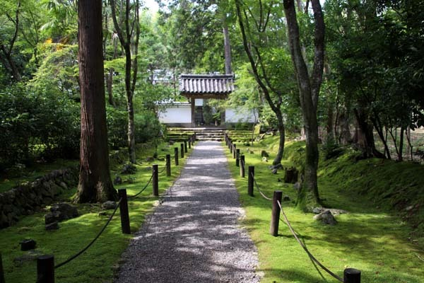 竹の寺 地蔵院_e0048413_18220507.jpg