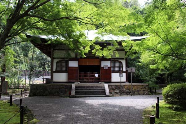 竹の寺 地蔵院_e0048413_18221862.jpg